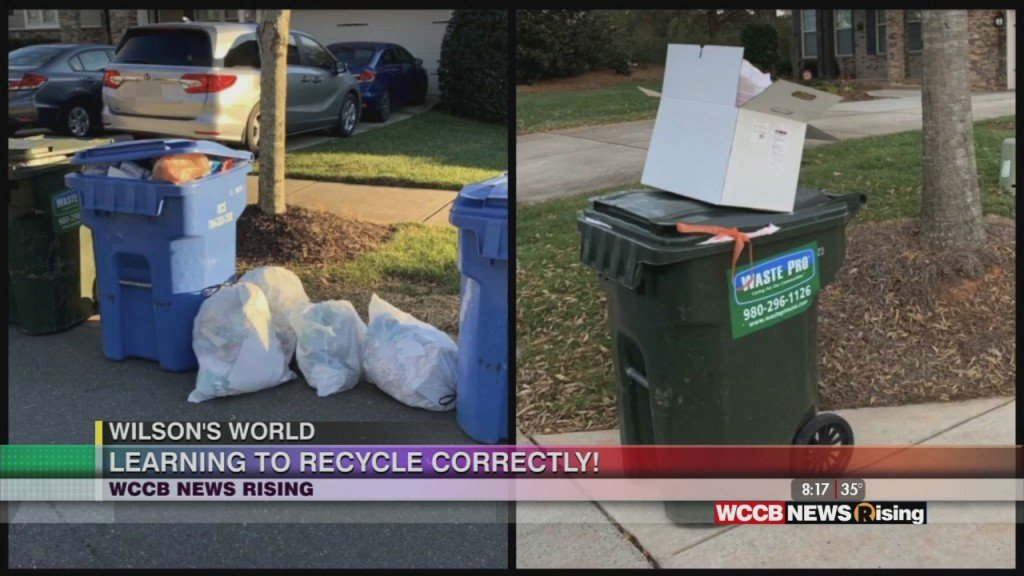 Wilson's World: Proper Recyling And Waste Management With Mecklenburg County Solid Waste