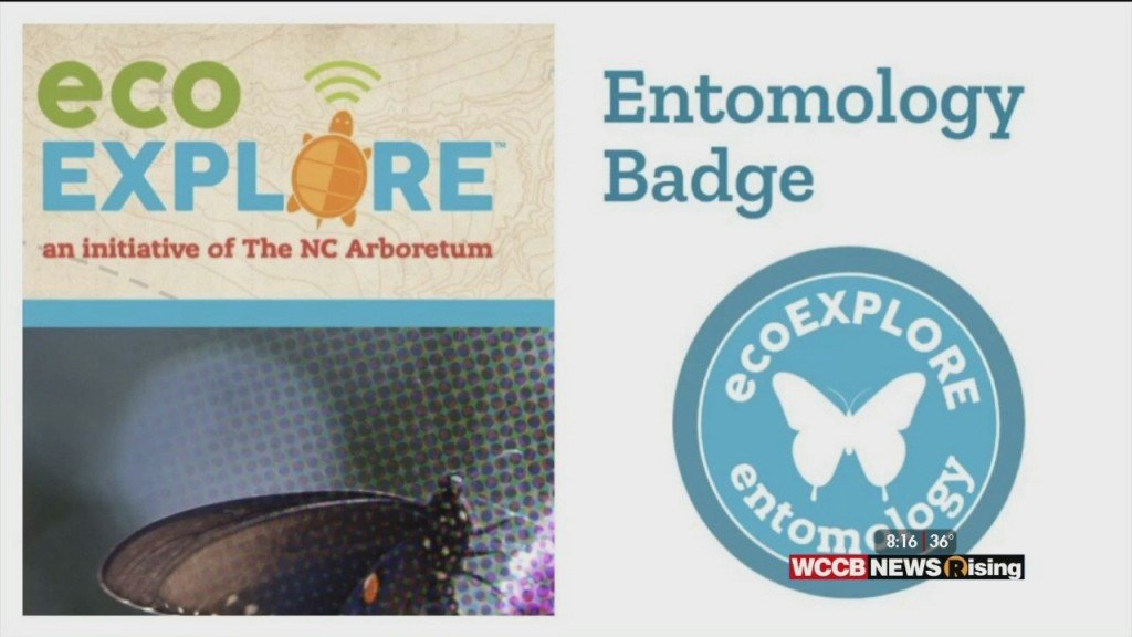 Wilson's World Homeschool: Learning More About The Points And Prizes For The Eco Explorers With The Nc Arboretum