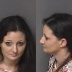 Shelia Woodcock Possession Of Meth Possession Of Heroin Possession Possession Of Drug Paraphernalia