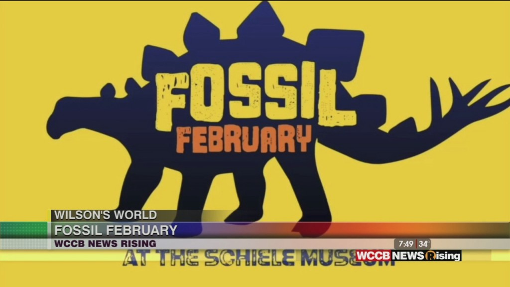 Wilson's World Homeschool: It's Fossil February At The Schiele Museum