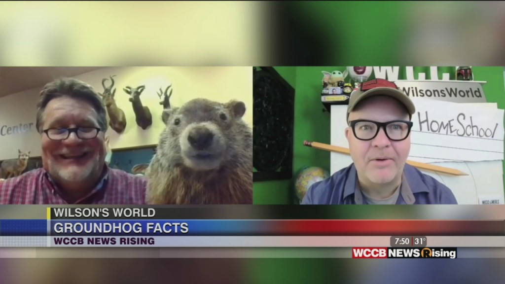 Wilson's World Homeschool: It's Goundhog Day With Dr. Steve At The Museum Of York County