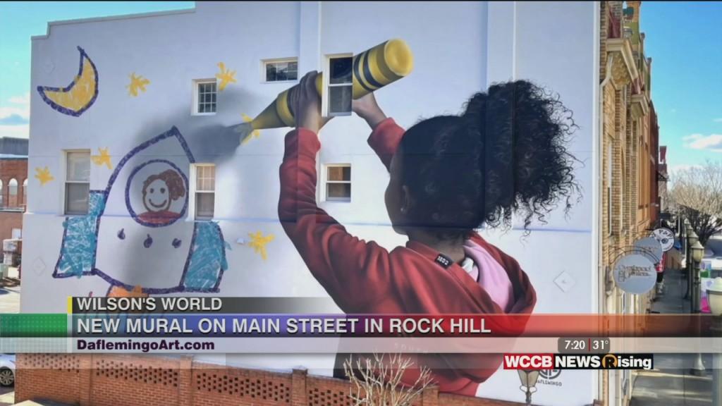 Wilson's World Homeschool: Meeting Rock Hill Artist Darion Fleming