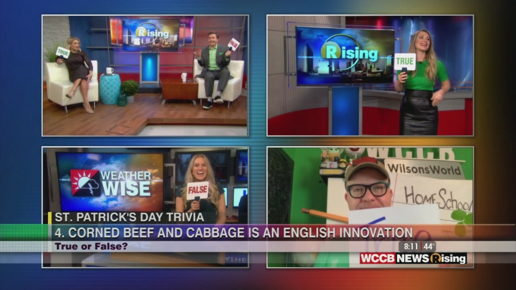 St. Patrick's Day Trivia: True Or False