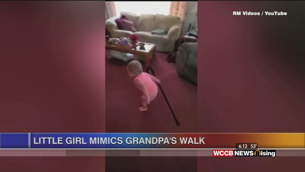 Viral Videos: Clever Dog And Baby Mimics Grandpa
