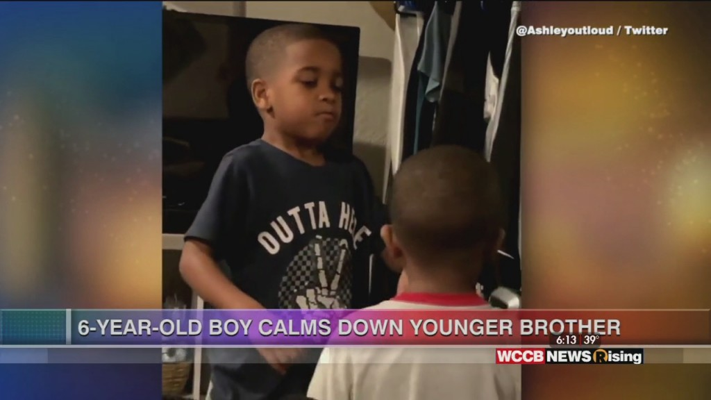 Viral Videos: 6 Year Old Boy Calms Down Younger Brother & Cat Vibes To Music