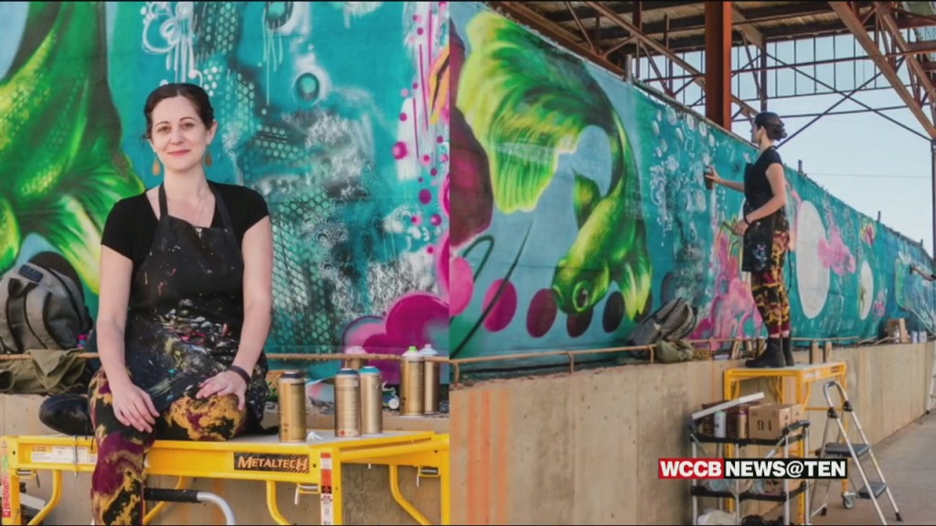 A Proposed Plan By Charlotte City Council Has Some Worried About Funding For Local Creative Work