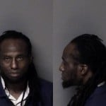 Sylvester Johnson Larceny