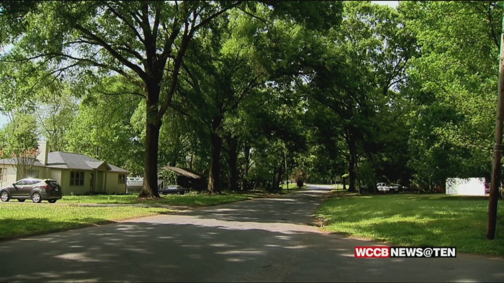 East Charlotte Residents Call On Elected Leaders To Do More To Protect The City's Tree Canopy