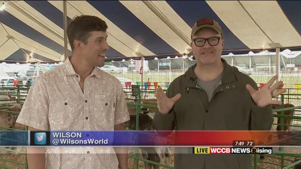 Wilson's World: Charlotte Fair