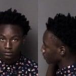 Anthony Scott Fleeing And Eluding Arrest