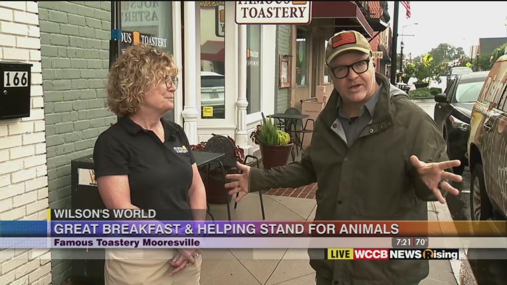 Wilson's World: Famous Toastery Mooresville