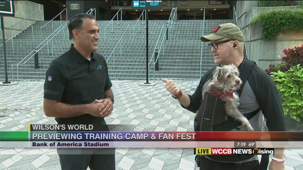 Wilson's World: Previewing Panthers Training Camp & Fan Fest