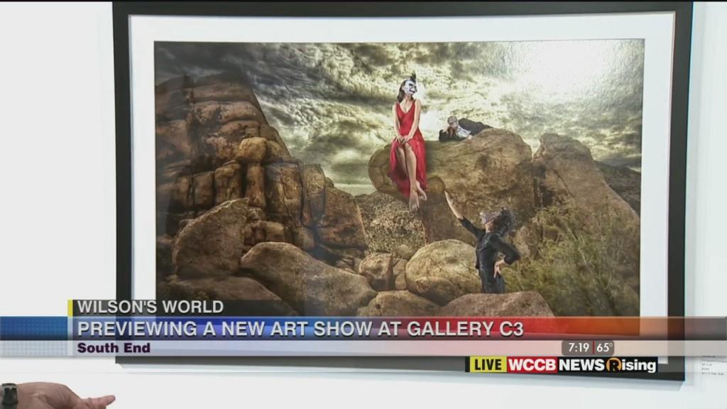 Wilson's World: New Art Show At Gallery C3