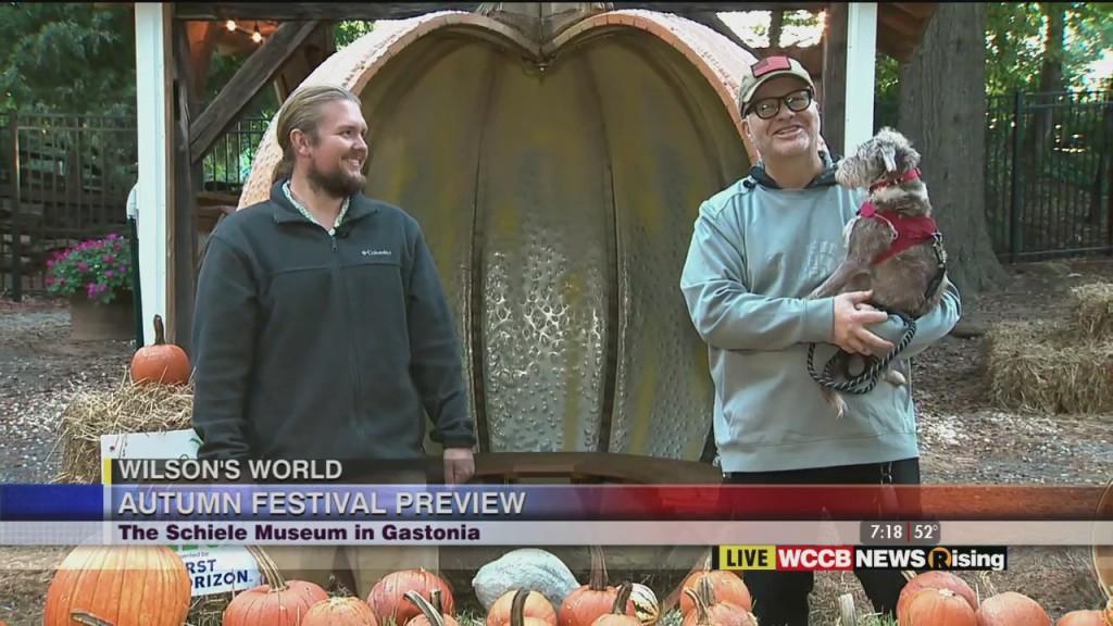 Wilson's World: Autumn Fest