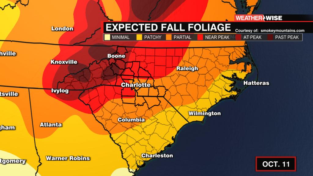 3weekly Foliage Forecast