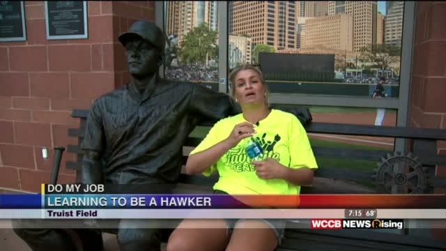 Do My Job: Hawker