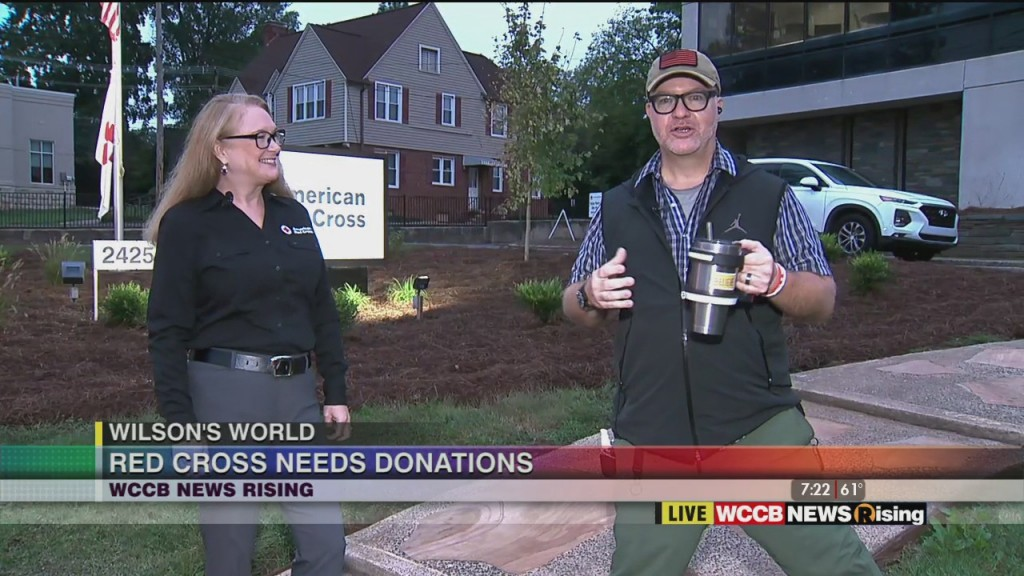 Wilson's World: Red Cross