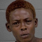 Ebony Chambers 2 Counts Of Assault Government Official Or Employee Second Degree Trespass