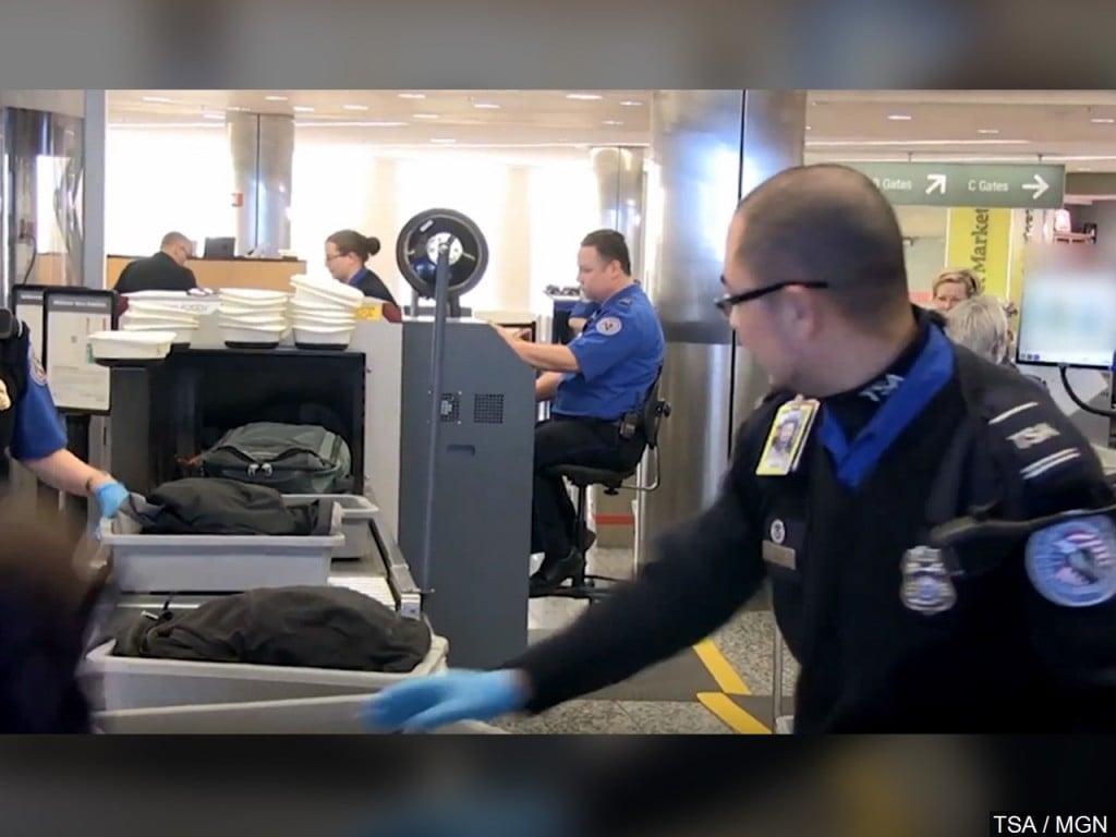 TSA security scan