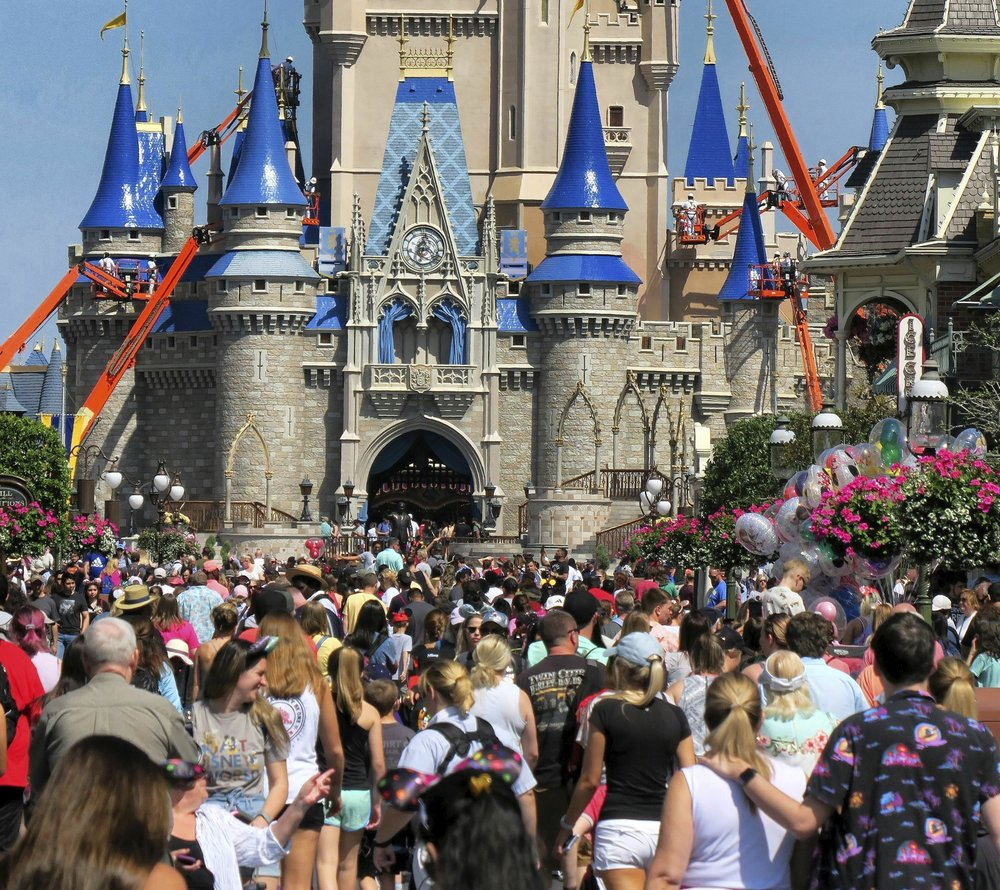 Nba Disney 6906