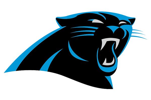 Carolina Panthers Cat Feature Image 3 2 600x400 Rg 6904