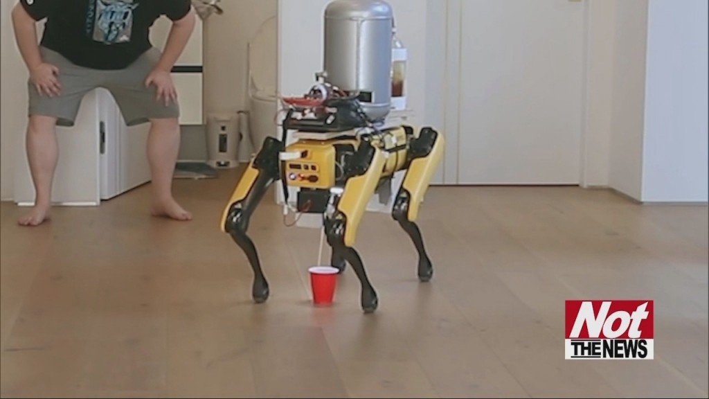 Peeing Robo Dog