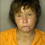 Sanders Misty Williamson Public Disorderly Public Intoxication Resist Arrest Entering Premises After Warning