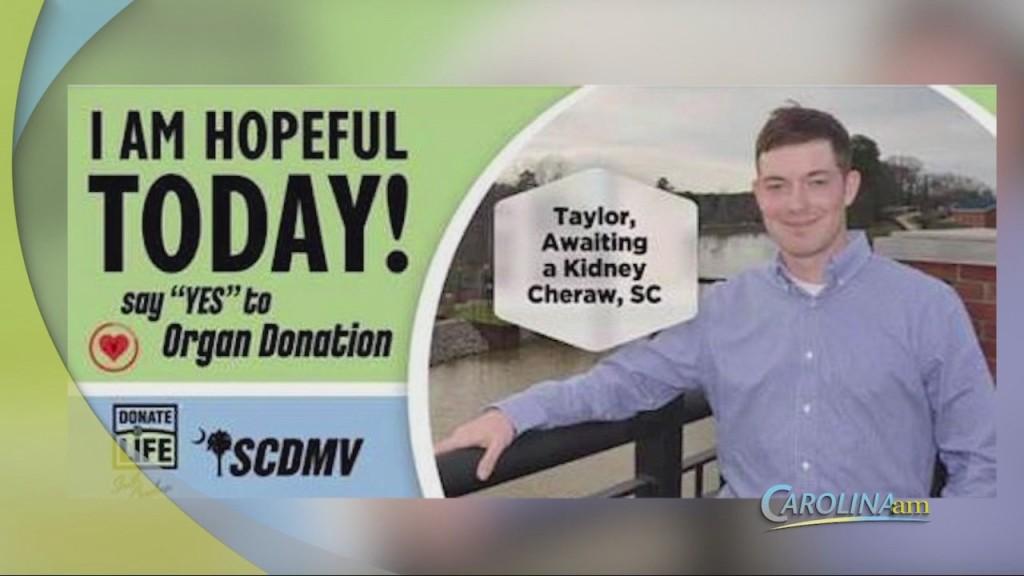 Cam 0519 Novinger Kidney
