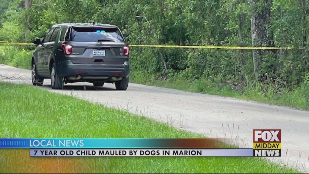 Marion Dog Attack