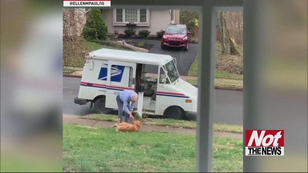 Mailman Love