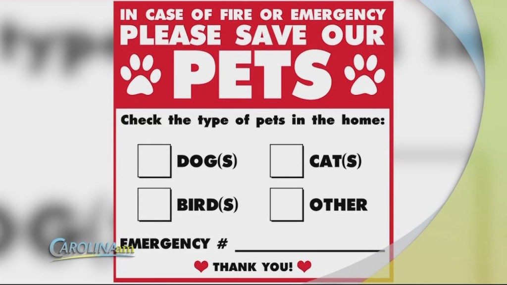 Cam 0715 Pet Safety Tips