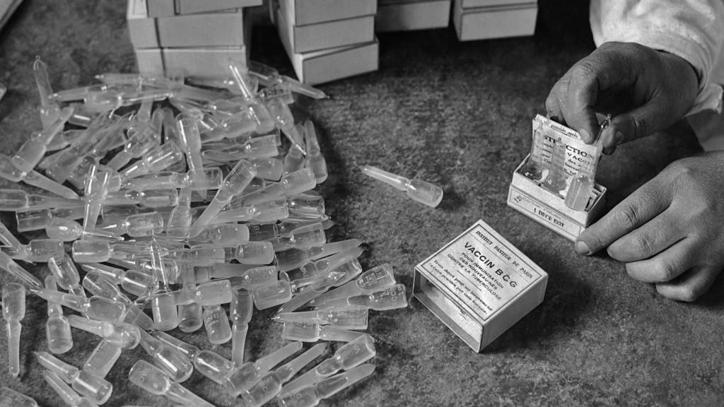 Tb Vaccine
