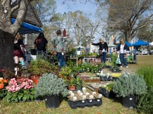 28th Annual Herb and Garden Fair @ Poplar Grove Plantation