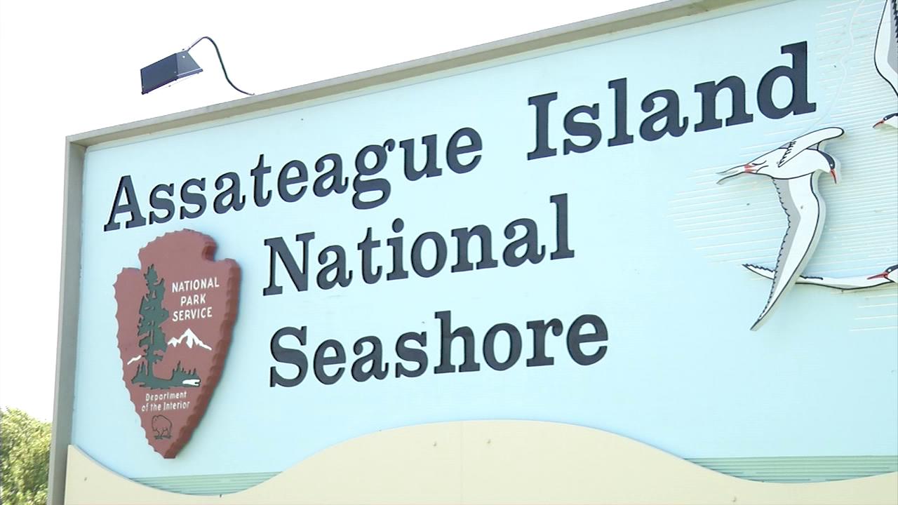 Assateague Island Weather August