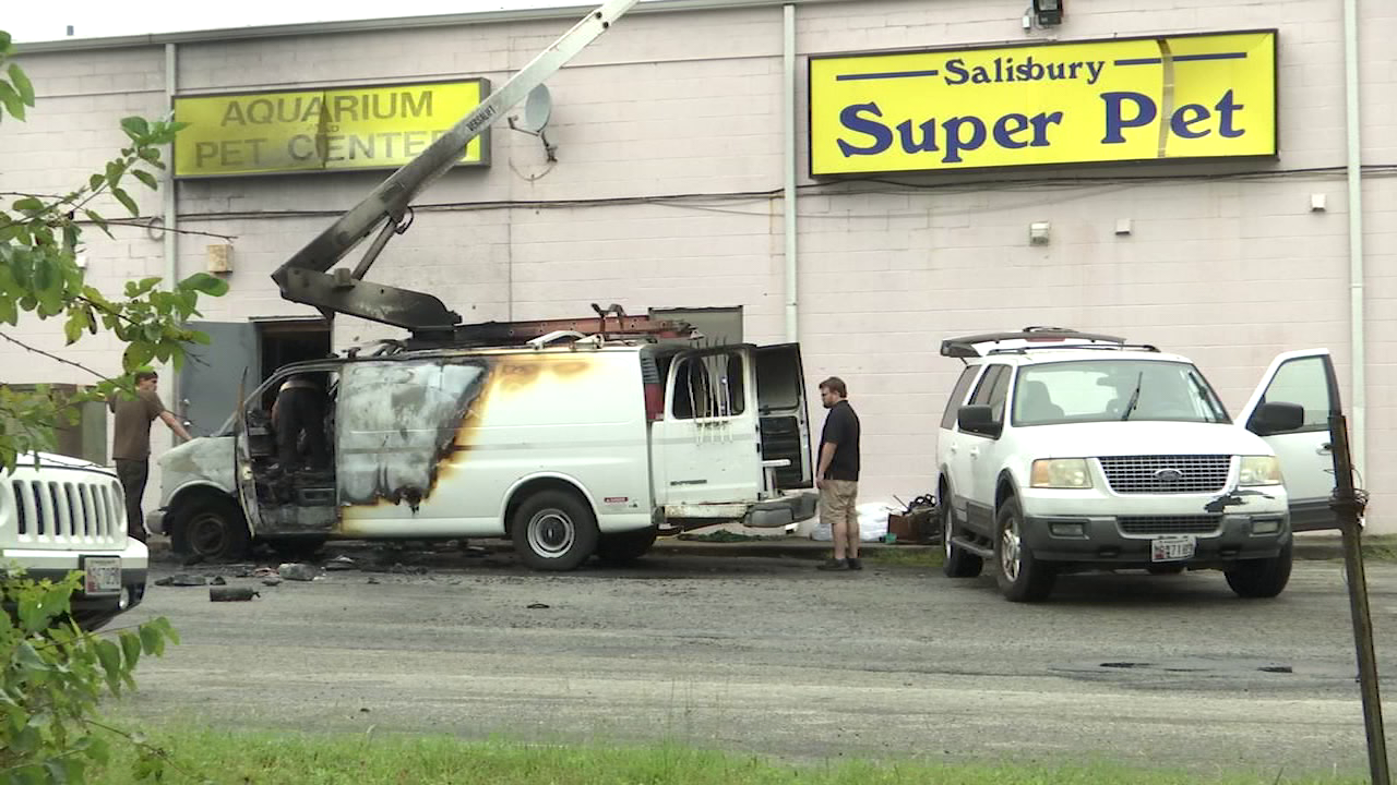 """The Car Store Salisbury Md >> Animals """"ok"""" after Md. pet store catches fire - 47abc"""