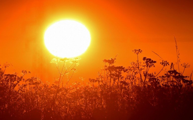 Delmarva's Second Heat Wave of Summer Ends - 47abc