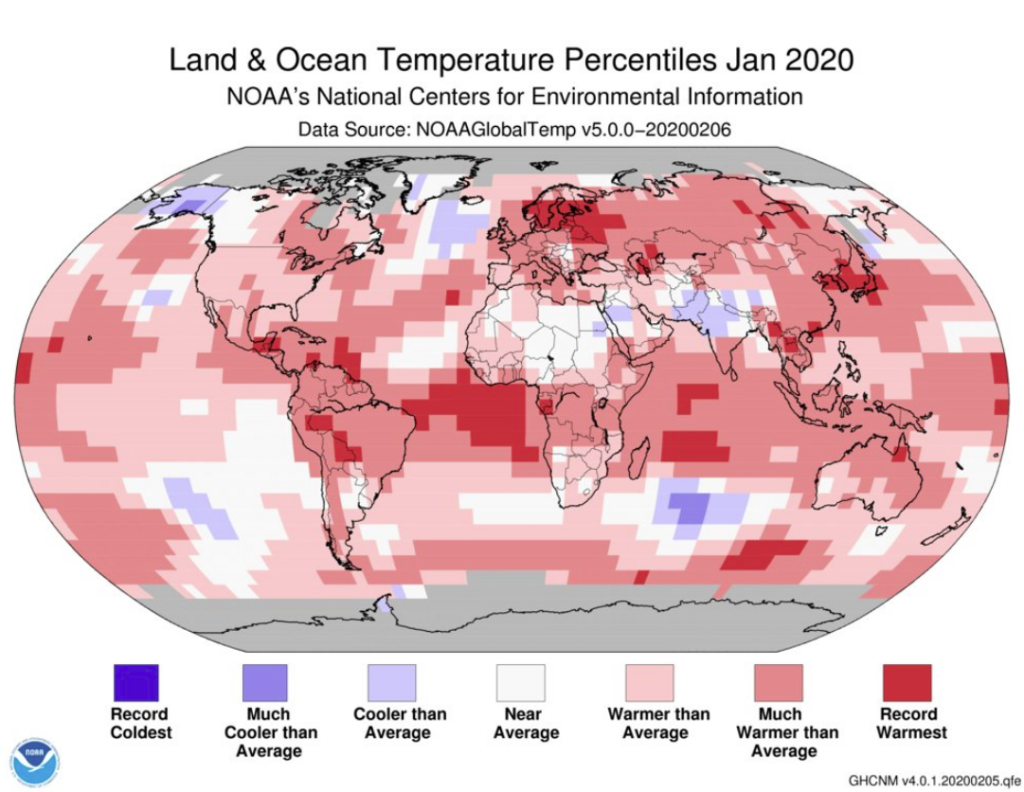 January 2020 warmest on record for globe