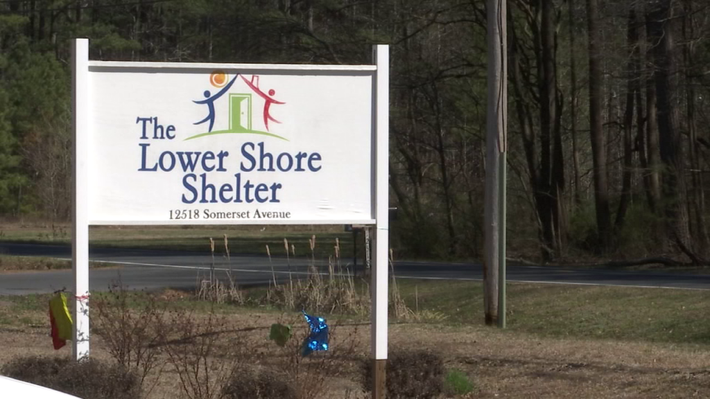 The Lower Shore Shelter