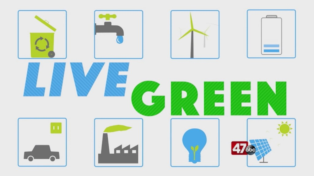 Live Green: 8.26.20