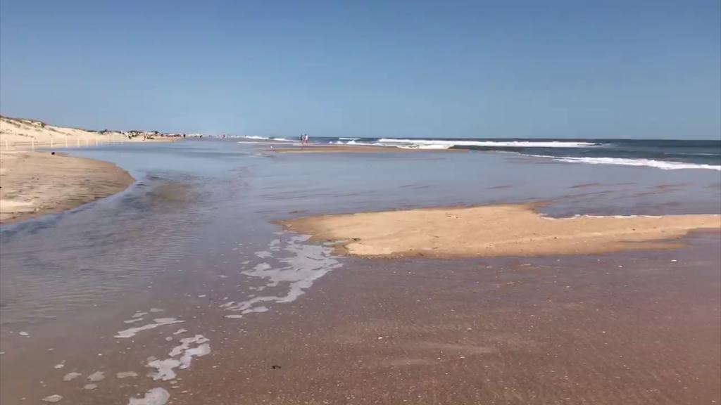 Assateague Osv High Tide