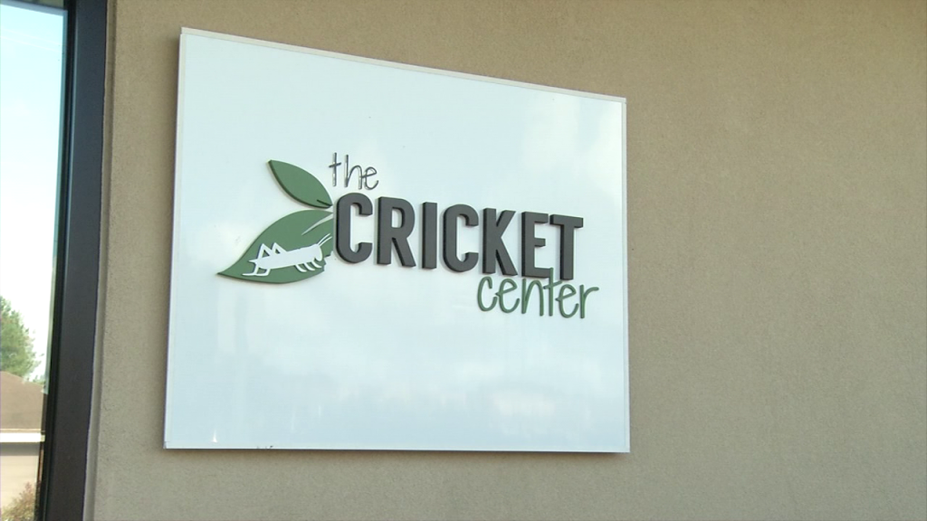 The Cricket Center