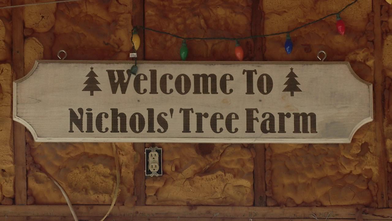 Nichols Tree Farm Closes For The Season 47abc