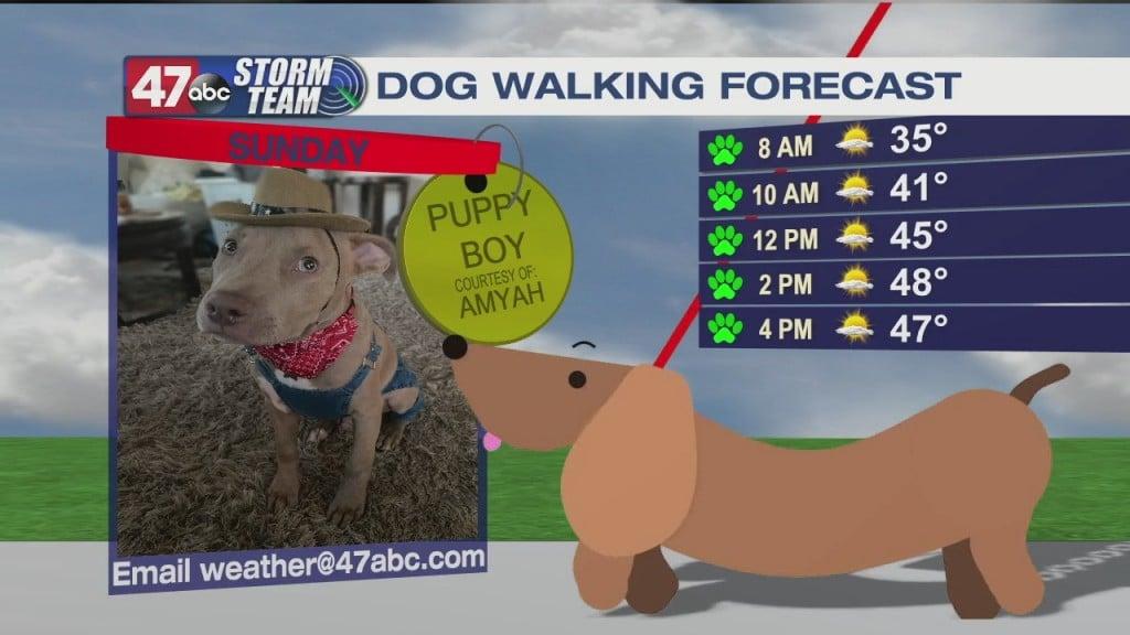 Morning Forecast Video 1.17.21