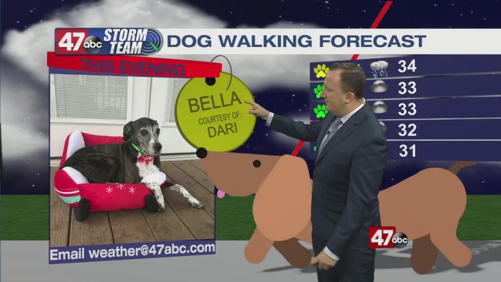 Evening Forecast Video 02.19.21
