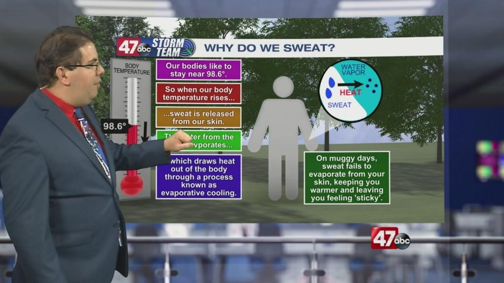 Weather Tidbits: Sweat