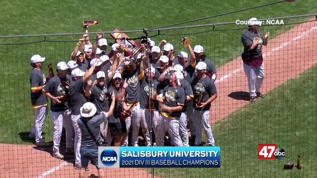 Salisbury Baseball Wins Their First National Title In Cedar Rapids, Iowa.