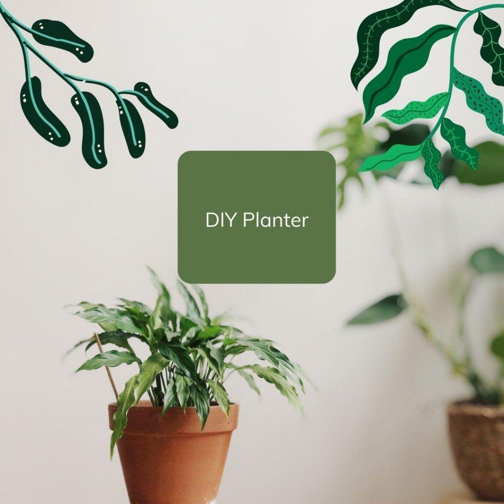 Diy Planter 1