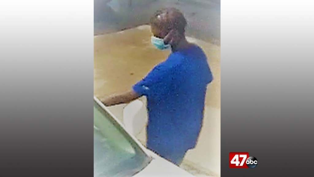1280 Ellendale Theft Suspect