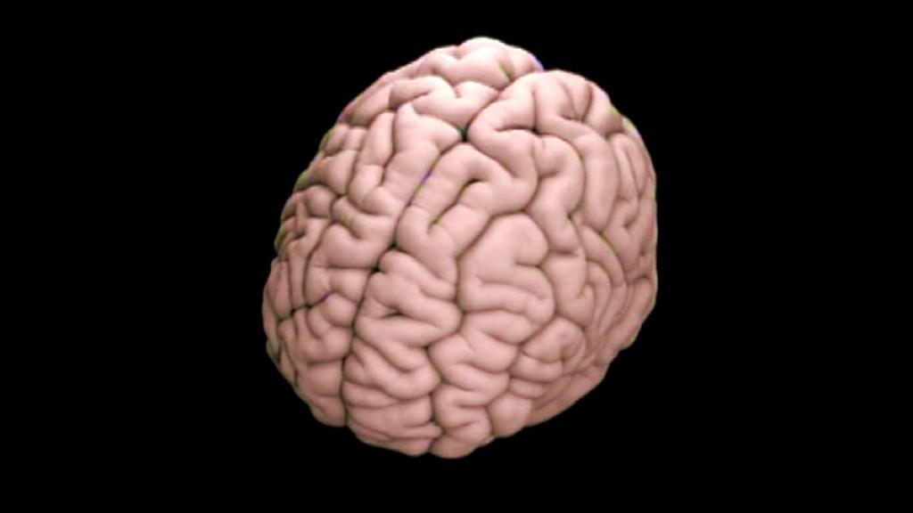 Alzheimer's Treatment Shows Promise