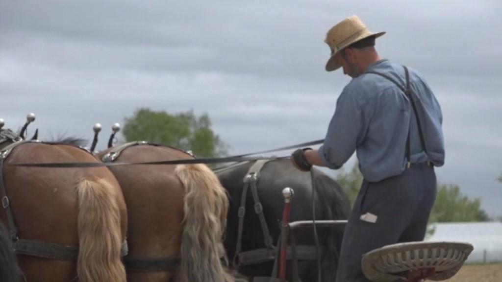Coronavirus & The Amish